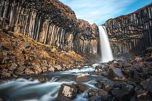 Svartifoss, de zwarte waterval in zuid IJsland