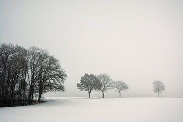 Stiller Winter Tag von Lena Weisbek