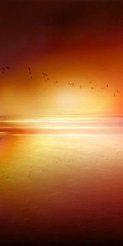 Coucher de soleil avec des oiseaux en vol