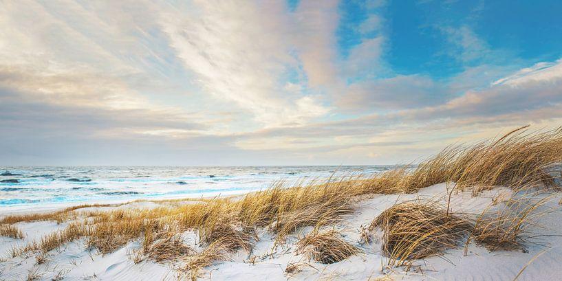 Noordzeestrand Panorama van Florian Kunde