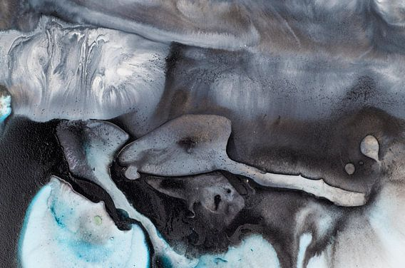 Macro zwart en turquoise van Edith Lüthi