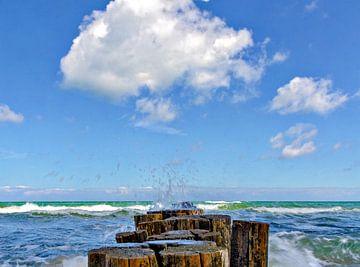 Buhne an der Ostsee von Leopold Brix