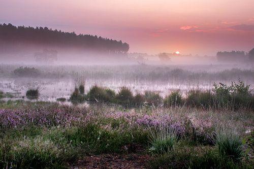 Sonnenaufgang an der Teut in Limburg