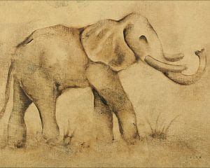 Globaler Elephant Licht Crop, Cheri Blum