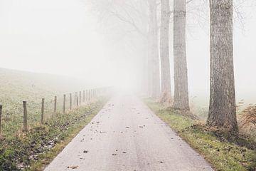 Nebel in Richtung Hof von Petra Brouwer