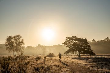 Laufen auf gefrorenem Heidekraut in Huizen von Larisa Landré