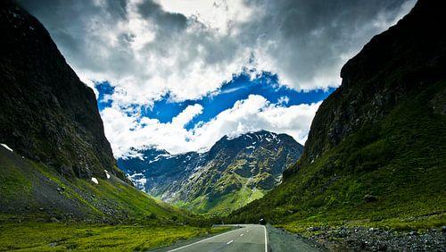 Road in the Fiordland - Nieuw Zeeland van Ricardo Bouman | Fotografie