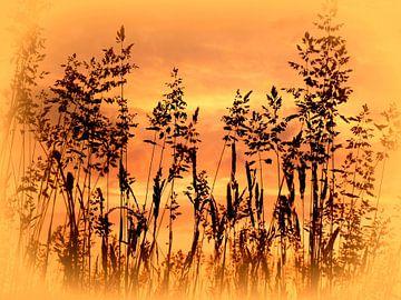 Geflüster im Gras van Heidrun Carola Herrmann