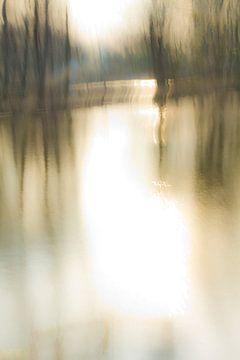 Bomen in het water_03