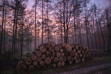 Sonnenaufgang Kootwijkerzand von Peter Haastrecht, van