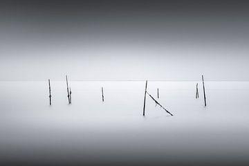 Visnetten van Etienne Hessels