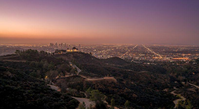 Los Angeles skyline van Photo Wall Decoration