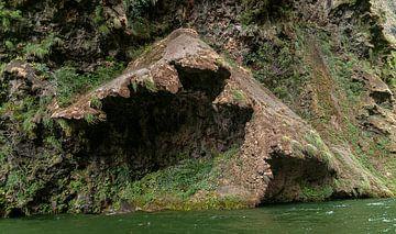 Mexico: Cañón del Sumidero National Park (Tuxtla Gutiérrez) van Maarten Verhees