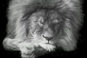 Schlafender Löwe - schwarz und weiß
