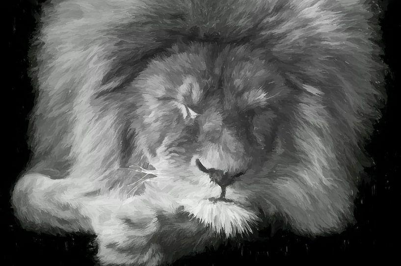 Schlafender Löwe - schwarz und weiß von Michar Peppenster