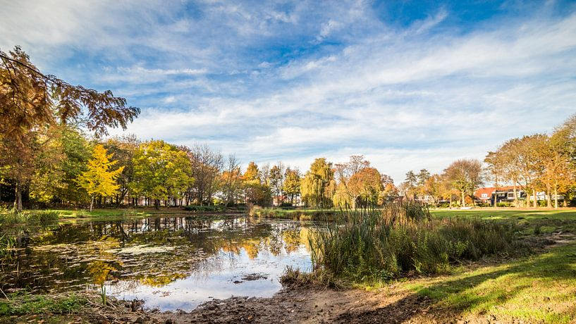 Koningspark in Herfstkleuren van Thomas van der Willik