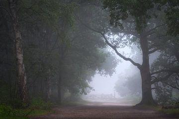Klang der Stille von Arnoud van de Weerd