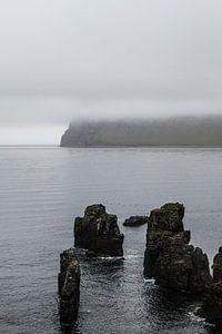 Rotsen in het water op IJsland