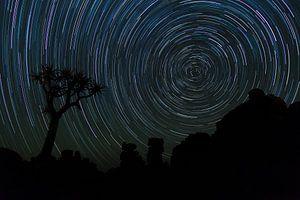 Startrail Kokerbomen bos, Namibia van