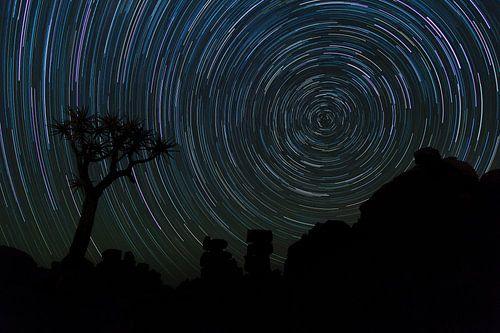 Startrail Kokerbomen bos, Namibia van Babs Boelens