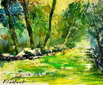 Grüne Gewässer von pol ledent