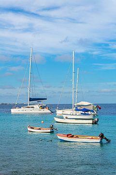 Landschap met vissersbootjes en zeilbootjes die drijven op de blauwe zee van Ben Schonewille