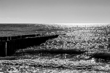 Glitzernd in den Wellen von Manon van Bochove