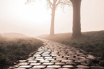 Fußweg im Nebel von Bert-Jan de Wagenaar