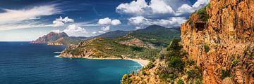 Panorama van het kustlandschap van het eiland Corsica in de Middellandse Zee van Fine Art Fotografie