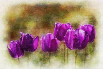 Paarse tulpen van Anita Meis
