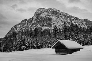 Winterstimmung in den Reschbergwiesen