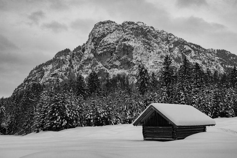 Winterstimmung in den Reschbergwiesen von Andreas Müller