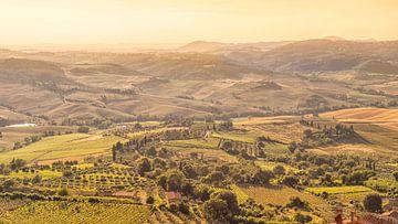 Montepulciano, Siena, Toscane, Italië van Jenco van Zalk