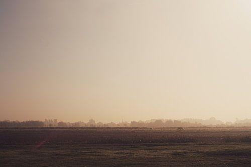 Zuidpolder in Barendrecht in de mist