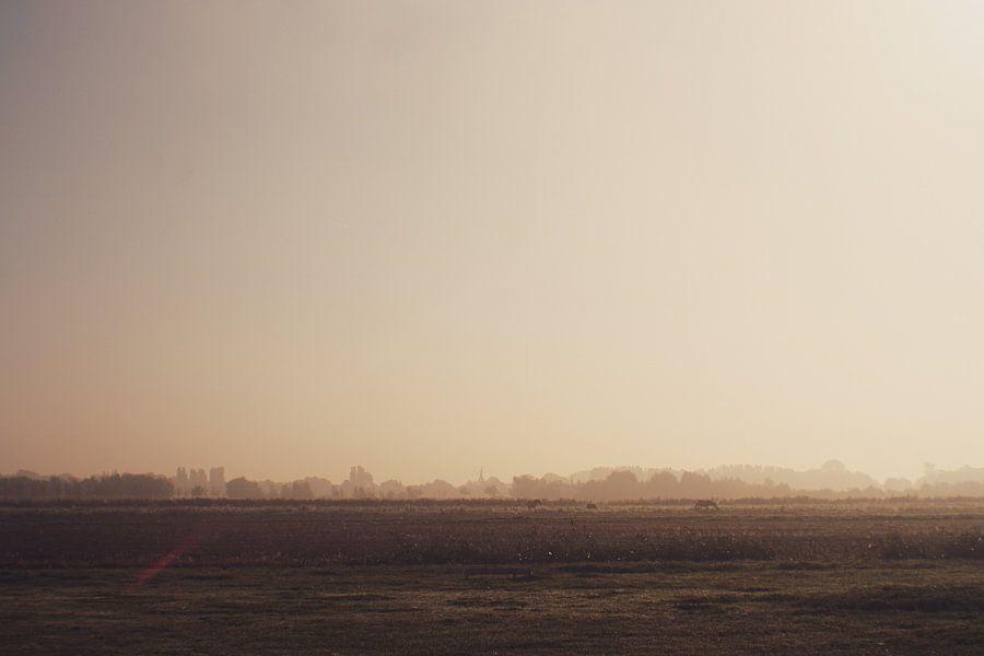 Zuidpolder in Barendrecht in de mist van Jeroen de Lang
