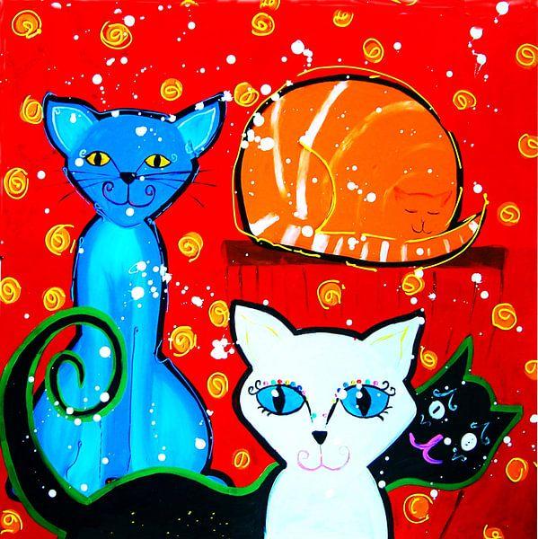 katten met rode achtergrond