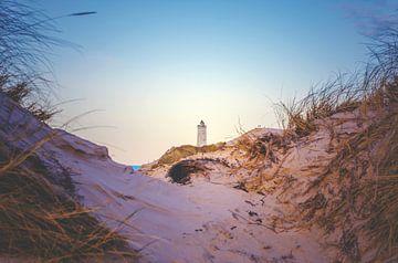 Ein Blick durch die Dünen von Florian Kunde
