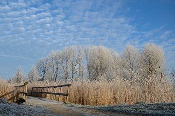 De brug naar winterwonderland van Yvonne van der Meij