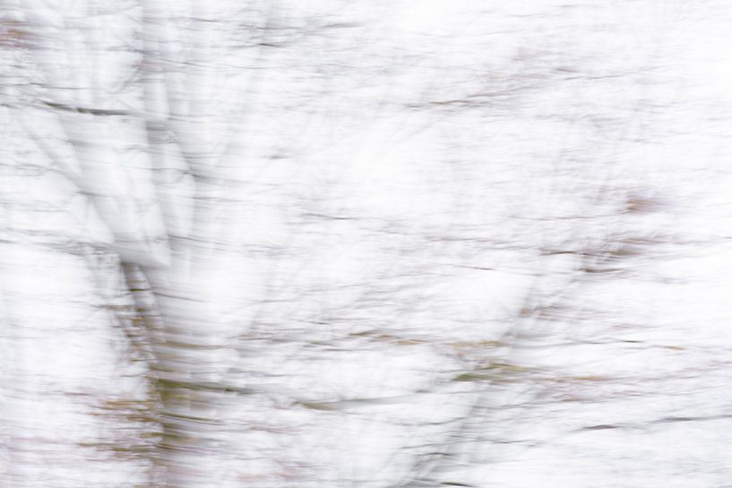 Waai waai weg | Boom | abstract realisme van Henriëtte Mosselman