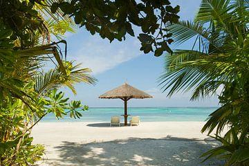 LPH 71076150 Lig stoelen en een parasol op het strand van een eiland, Malediven van BeeldigBeeld Food & Lifestyle