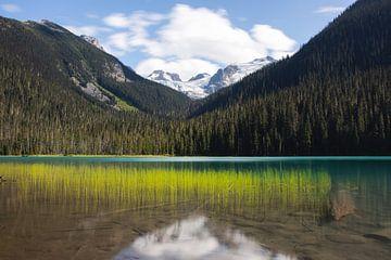 Lower Joffre Lake Provincial Park in Brittisch Colombia Canada van Christien Brandwijk