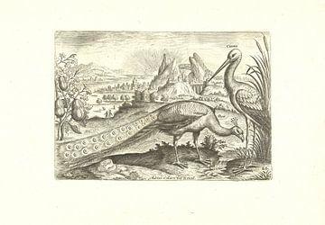 Twee vogels in een landschap van Adriaen Collaert, 1598 - 1602
