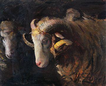Kop van ram en ooi, HEINRICH VON ZÜGEL, 1880