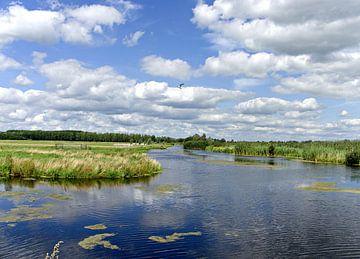 polder met wolken van joyce kool