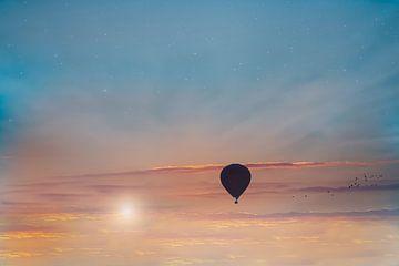 Luchtballon van eric brouwer