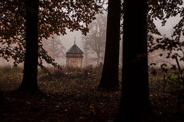 Duiventil in een duister bos van Hessel de Jong