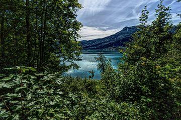 Wolfgangsee Oostenrijk van Frank Batenburg