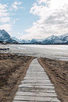 Road to the arctic beach (Rambergstranda) van Quinten Tolboom