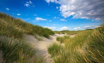 Dune sur BVpix