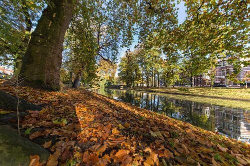 De Stadsbuitengracht in Utrecht, ter hoogte van de Maliesingel van
